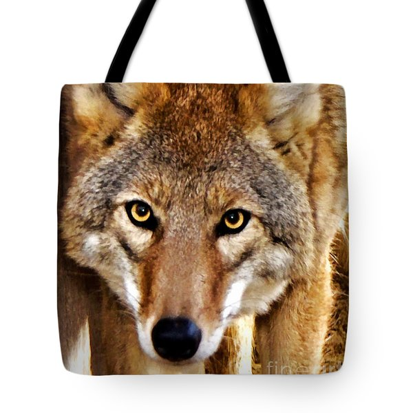Wild Coyote Tote Bag