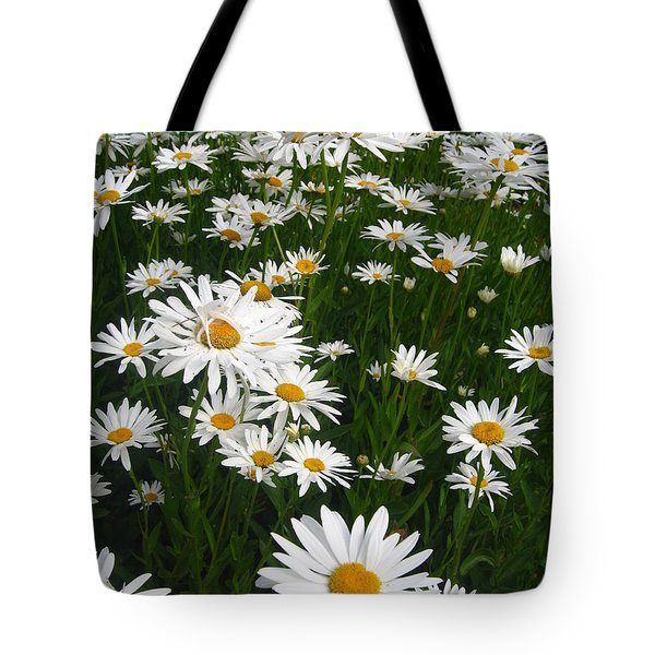Wild Daisies Tote Bag by Dorothy Cunningham