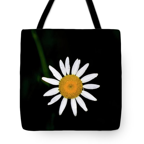 Tote Bag featuring the digital art Wild Daisy by Chris Flees