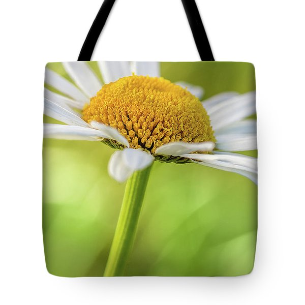 Tote Bag featuring the photograph Daisy by Ron Pate
