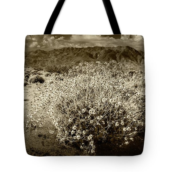 Tote Bag featuring the photograph Wild Desert Flowers Blooming In Sepia Tone  by Randall Nyhof