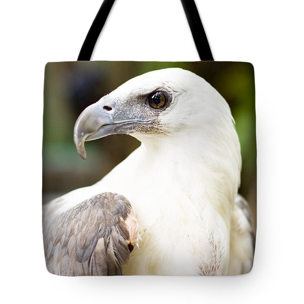 Tote Bag featuring the photograph Wild Eagle by Jorgo Photography - Wall Art Gallery