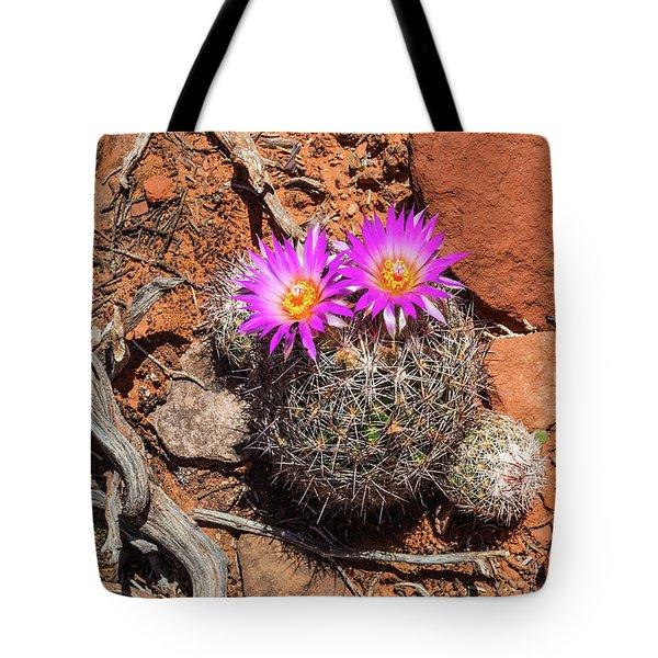 Wild Eyed Cactus Tote Bag