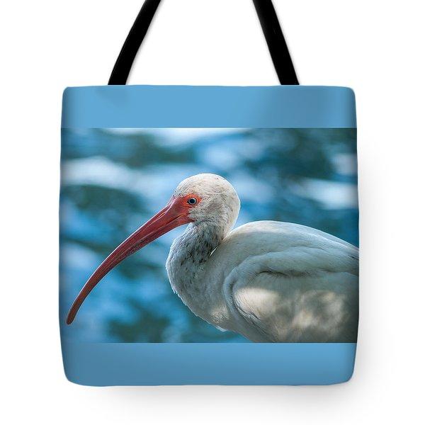 Wild Eyed Ibis Tote Bag