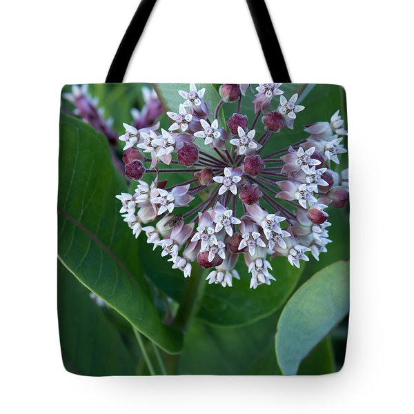 Wild Flower Star Burst Tote Bag
