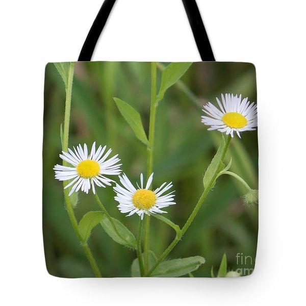 Wild Flower Sunny Side Up Tote Bag