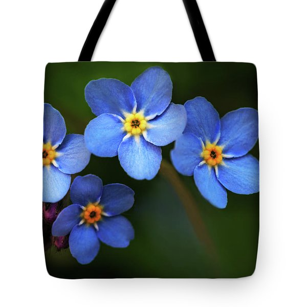 Wild Flower Forget-me-not Since The Middle Ages Symbolizes The Celestial Eye And Reminds You Of God Tote Bag
