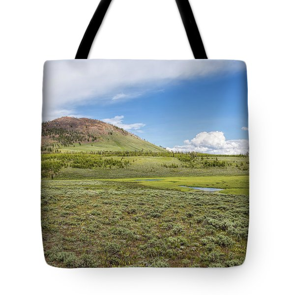 Tote Bag featuring the photograph Wild Flowers And Grasses At Yellowstone by John M Bailey
