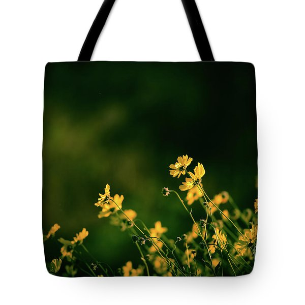 Tote Bag featuring the photograph Evening Wild Flowers by Kelly Wade