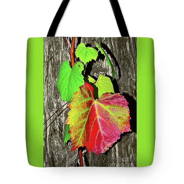 Tote Bag featuring the photograph Wild Grape Vine By Kaye Menner by Kaye Menner