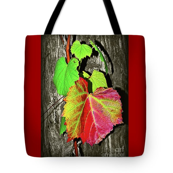 Tote Bag featuring the photograph Wild Grape Vine II By Kaye Menner by Kaye Menner