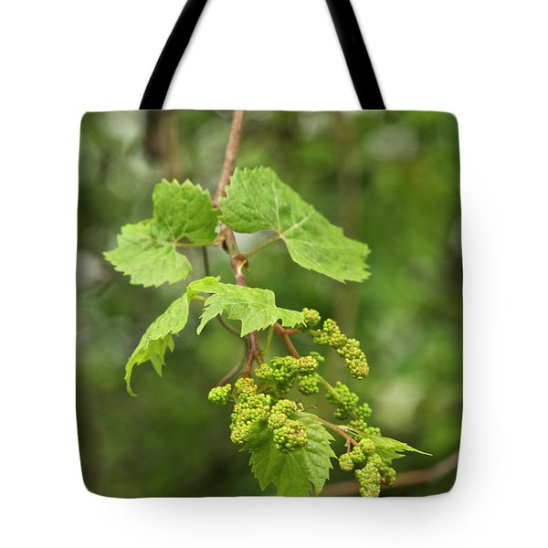 Wild Grapes 1992 Tote Bag by Michael Peychich