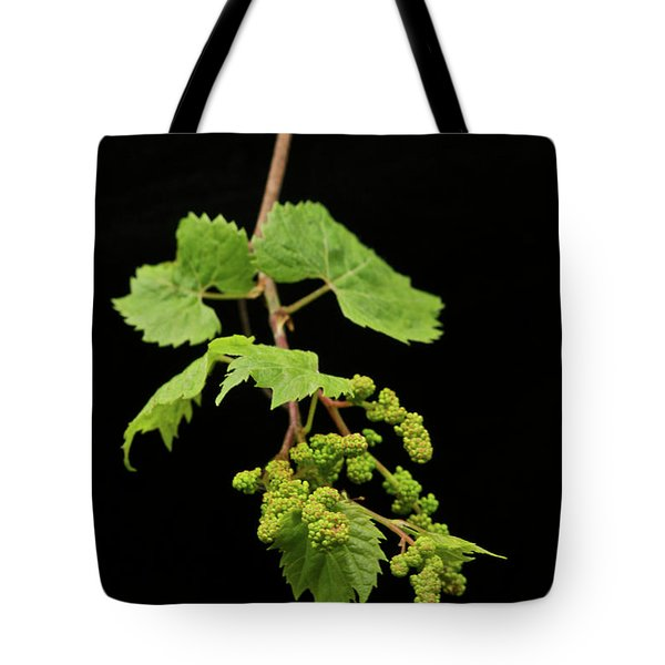 Wild Grapes 1995 Tote Bag by Michael Peychich