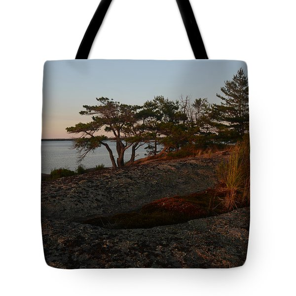 Wild Grass At Sunset - Georgian Bay Tote Bag