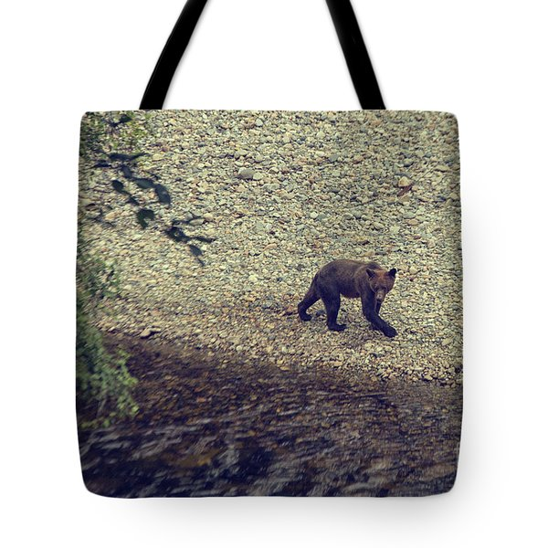 Wild Grizzly Bear Tote Bag by Patricia Hofmeester