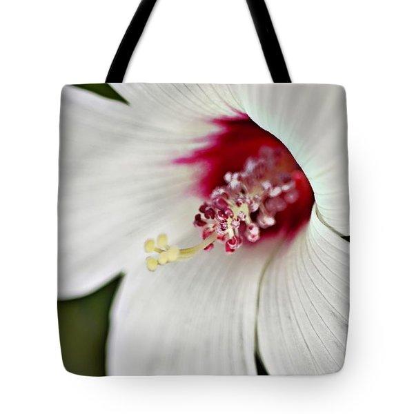 Wild Hibiscus Moscheutos_2a Tote Bag