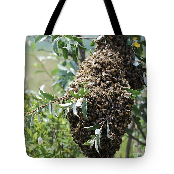 Wild Honey Bees Tote Bag by Randy Bodkins