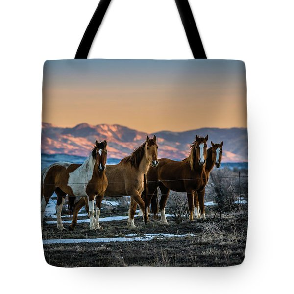 Wild Horse Group Tote Bag