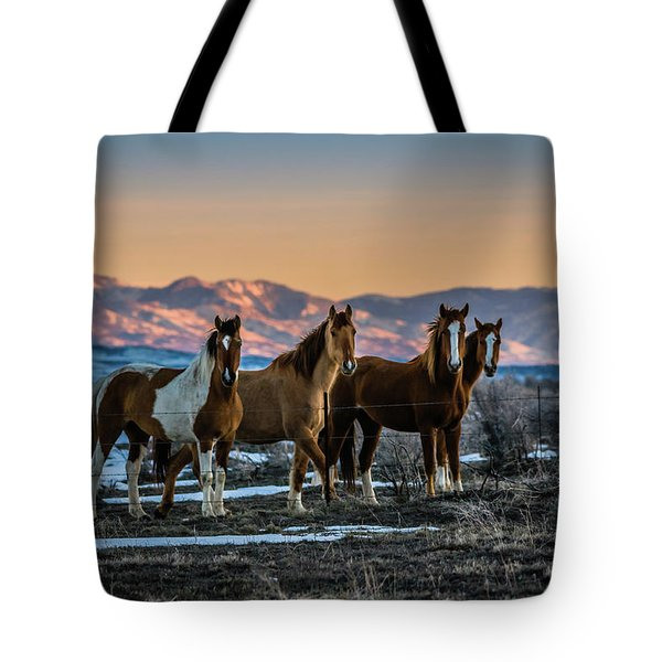 Tote Bag featuring the photograph Wild Horse Group by Bryan Carter
