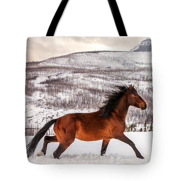Wild Horse Tote Bag by Todd Klassy