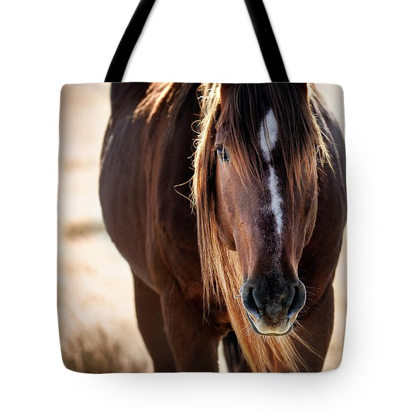 Wild Horse Watching Tote Bag