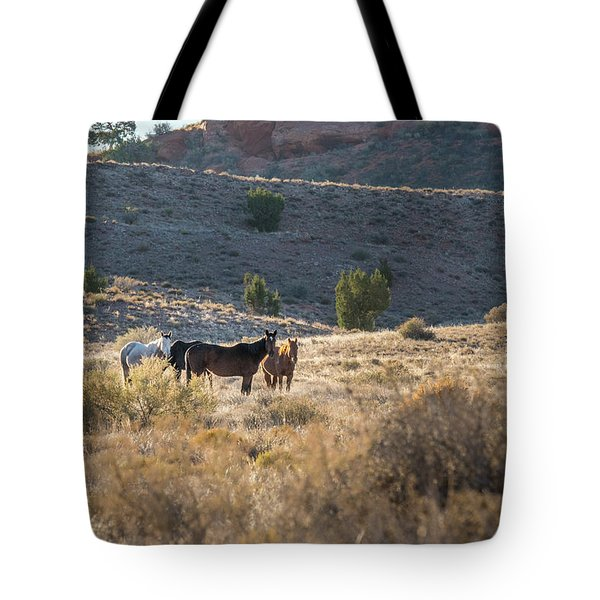 Tote Bag featuring the photograph Wild Horses In Monument Valley by Jon Glaser