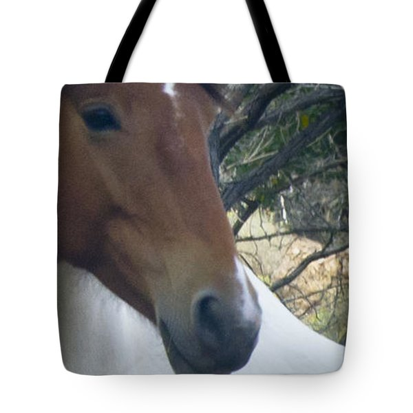 Tote Bag featuring the photograph Wild Horses Of Nevada 2  by Catherine Sobredo