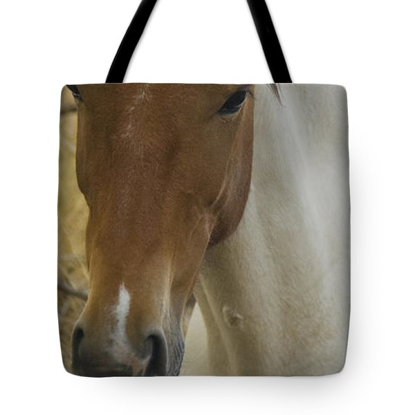Tote Bag featuring the photograph Wild Horses Of Nevada 3 by Catherine Sobredo
