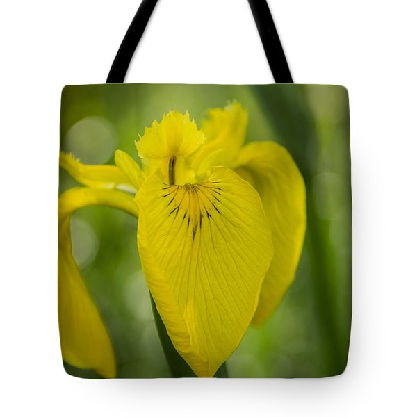 Tote Bag featuring the photograph Wild Iris by Randy Bayne