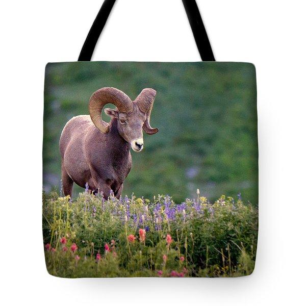 Wild Journey Tote Bag