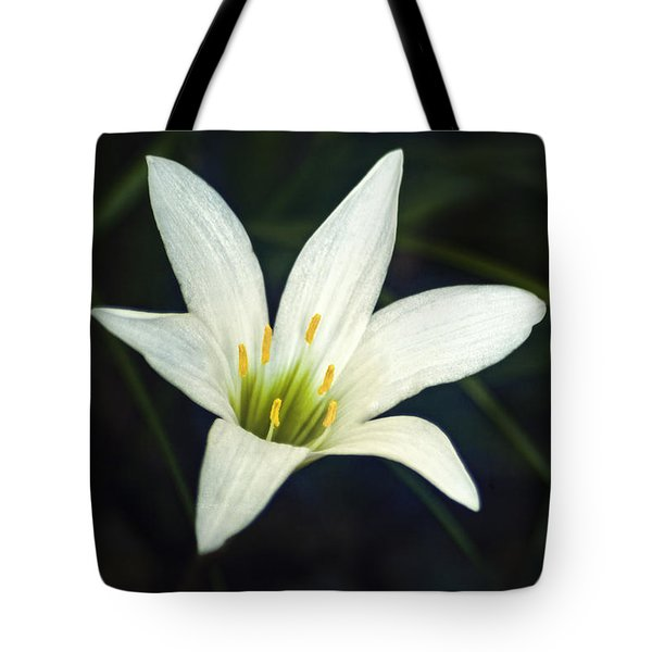 Wild Lily Tote Bag by Carolyn Marshall
