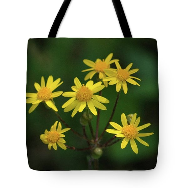 Tote Bag featuring the photograph Wild Meadow Daisies by LeeAnn McLaneGoetz McLaneGoetzStudioLLCcom