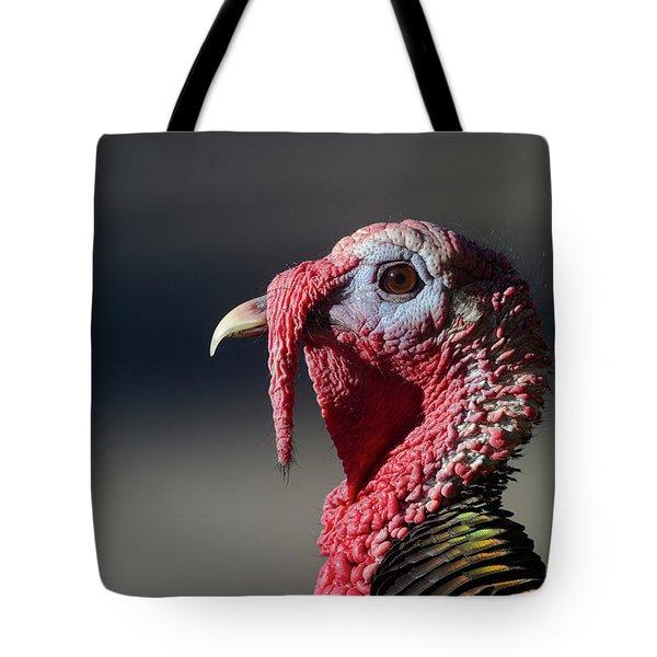 Wild Merriams Turkey Portrait  Tote Bag