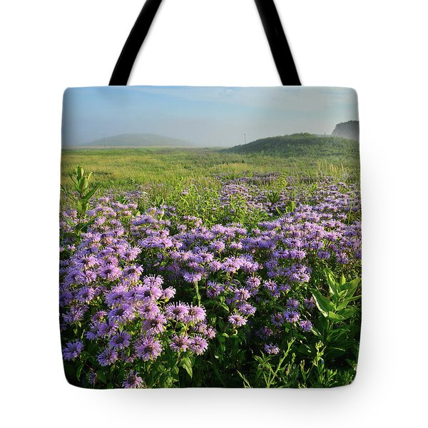 Wild Mints Galore In Glacial Park Tote Bag