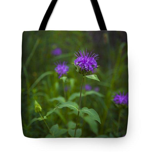 Wild Monarda Tote Bag