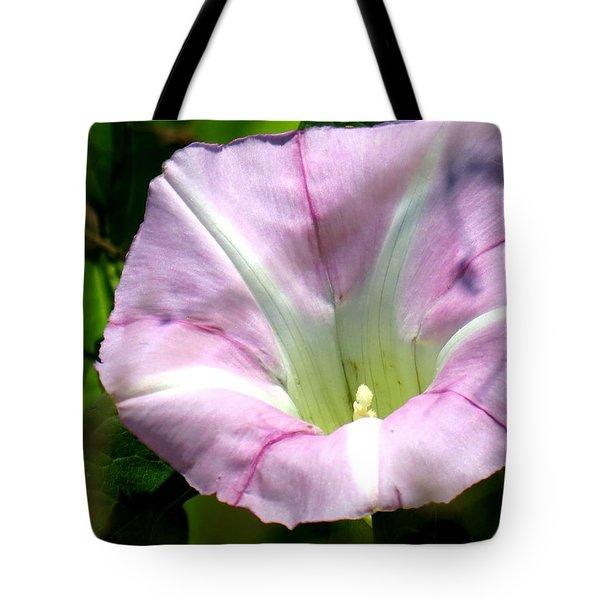 Wild Morning Glory Tote Bag