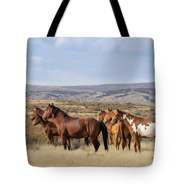 Wild Mustang Family Band In Sand Wash Basin Tote Bag