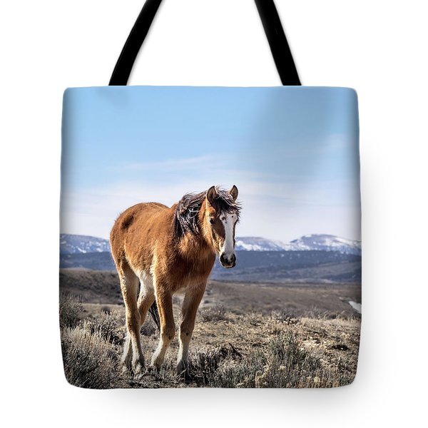 Wild Mustang Filly Of Sand Wash Basin Tote Bag