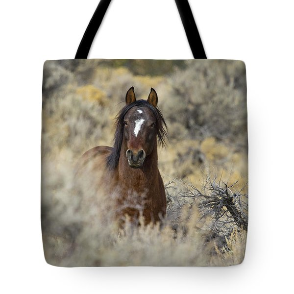 Wild Mustang Stallion Tote Bag