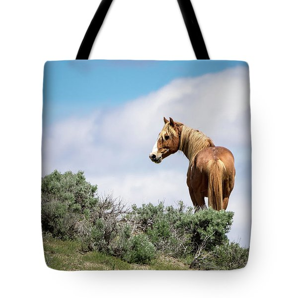 Wild Mustang Stallion Of Sand Wash Basin Tote Bag