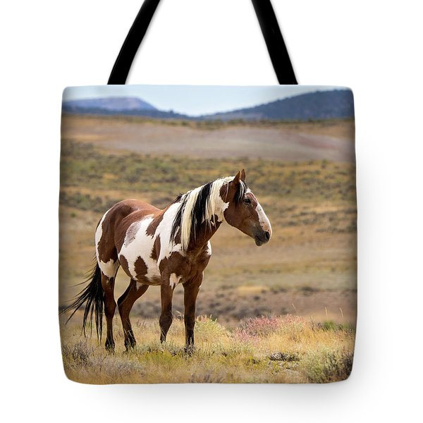 Wild Mustang Stallion Picasso Of Sand Wash Basin Tote Bag