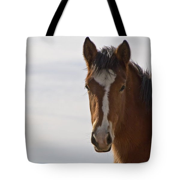 Wild Mustang Yearling Tote Bag