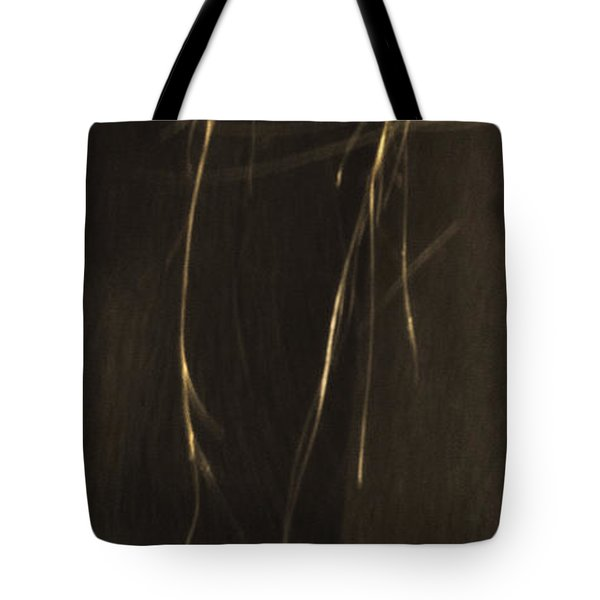 Wild Mustangs Of New Mexico 43 Tote Bag