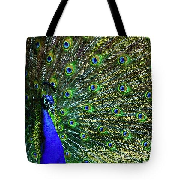 Wild Peacock Tote Bag