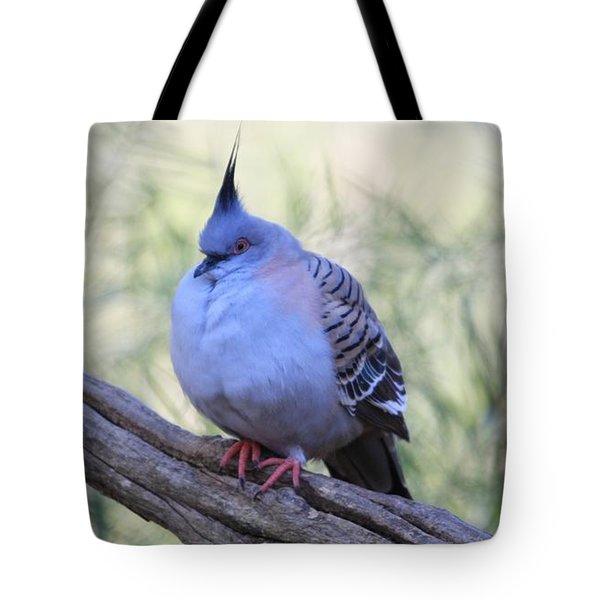 Wild Pigeon Tote Bag