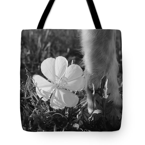 Wild Primrose With Dog's Foot Tote Bag