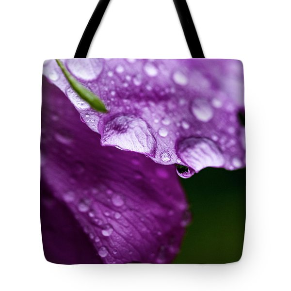 Tote Bag featuring the photograph Wild Rose Droplet by Darcy Michaelchuk