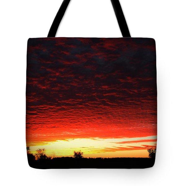 Wild Sky 2 Tote Bag by Elaine Hunter