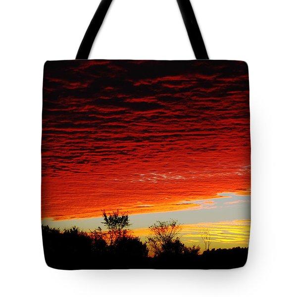 Wild Sky Tote Bag by Elaine Hunter