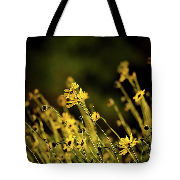 Tote Bag featuring the photograph Wild Spring Flowers by Kelly Wade